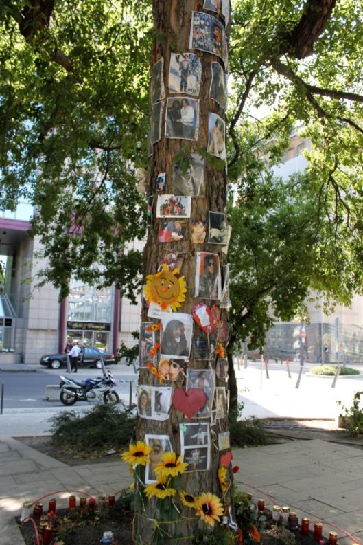 L'arbre de MJ à Budapest